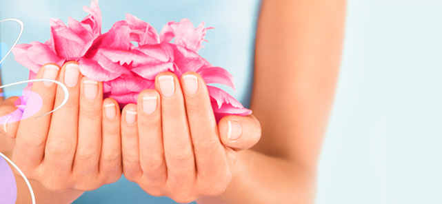 Graphic of flower petals being held in a lady's hand